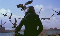 Quaker Oats + Sundance short film
